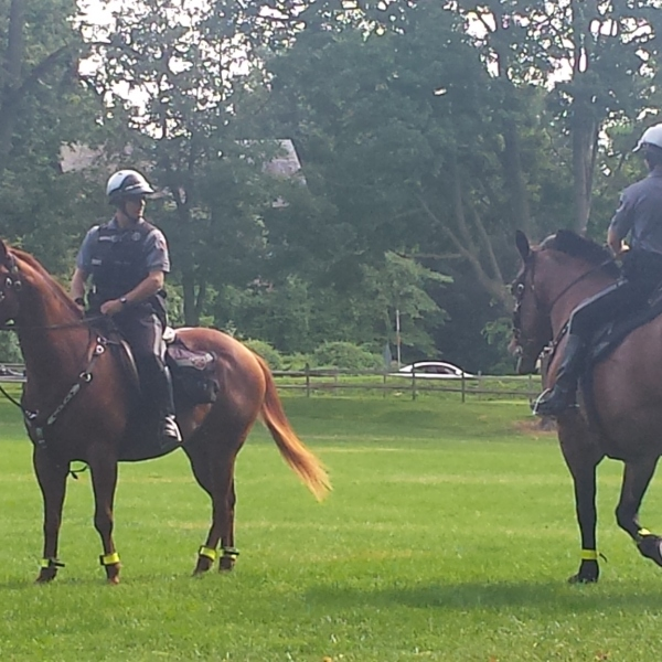lancaster mounted horses_148143
