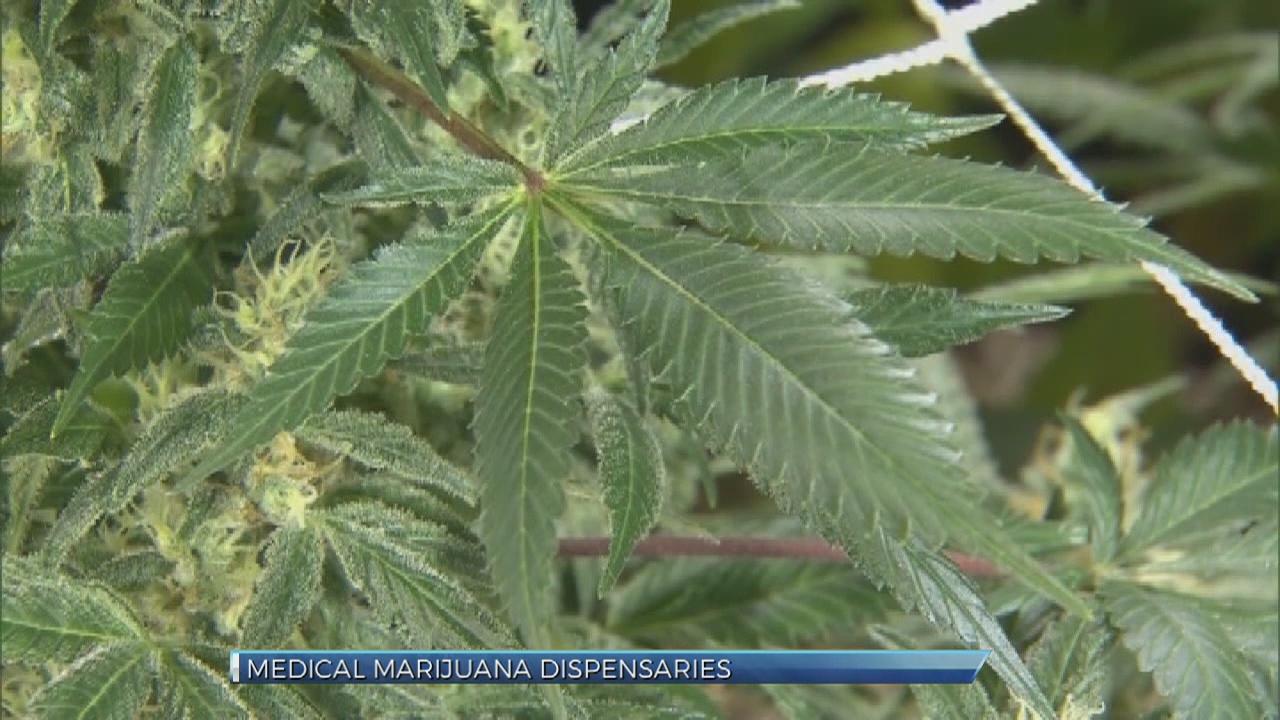 medical marijuana_342884