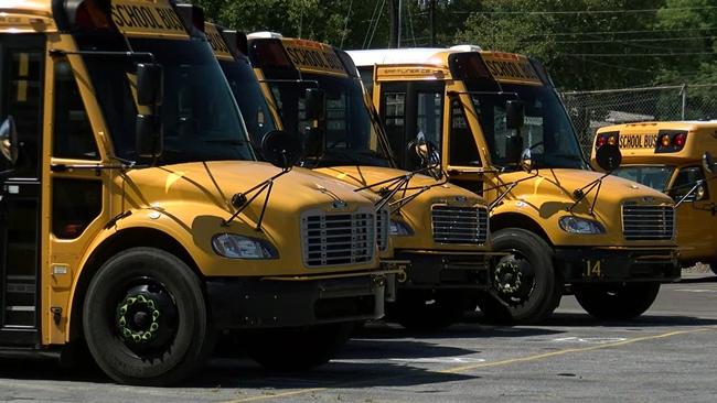 school_buses_392312