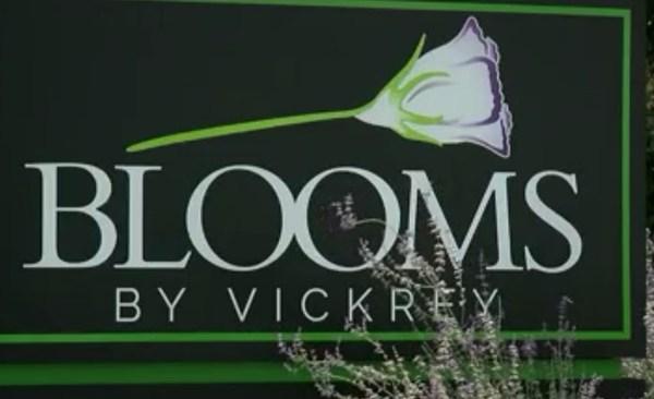 blooms_593094