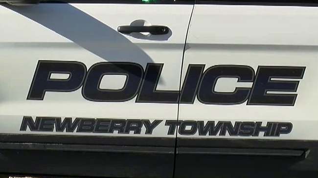 newberry_township_police_484546