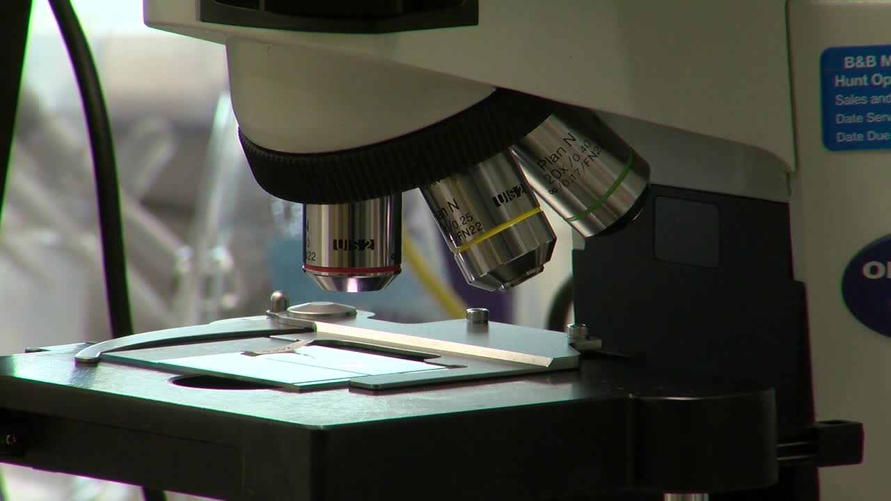 microscope_research.jpg
