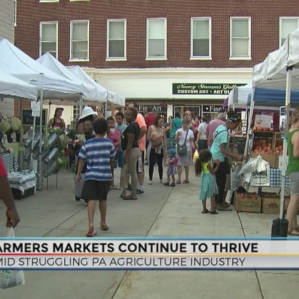 Farmers_markets_thrive_amid_struggling_P_0_20180712053214