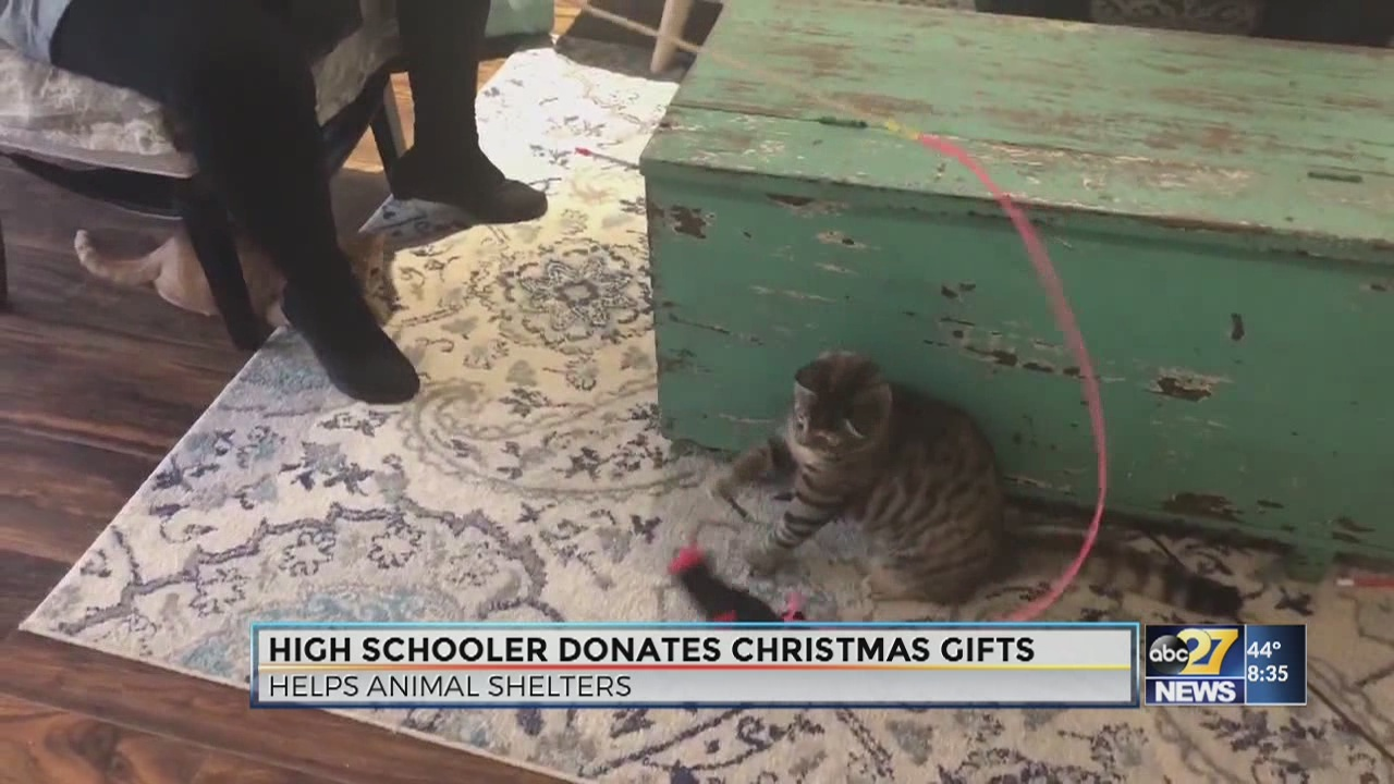 High schooler delivers donated gifts to animal shelter