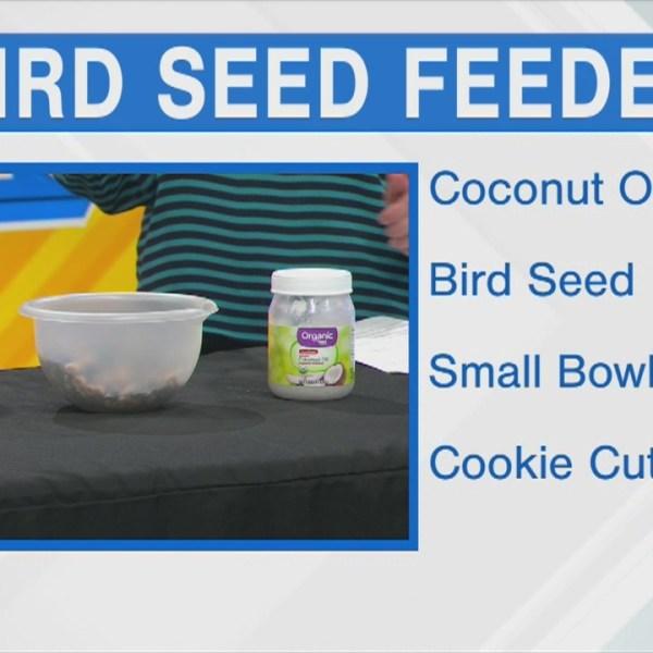 Bird Seed Feeder