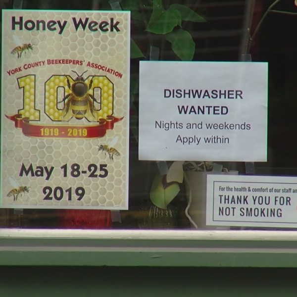 A sweet week in York, as several restaurants serve honey-themed dishes
