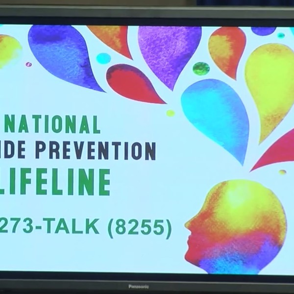 Pennsylvania launches task force for suicide prevention