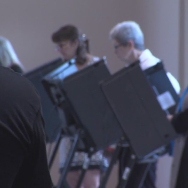 State agencies monitor primary election security
