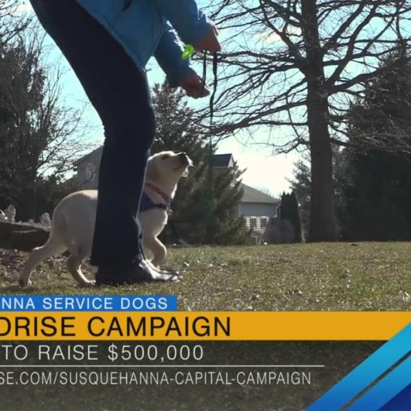 Susquehanna Service Dogs: Crowdrise Campaign