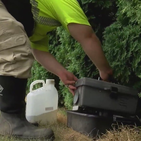 Mosquitoes test positive for WNV in York, Adams Counties