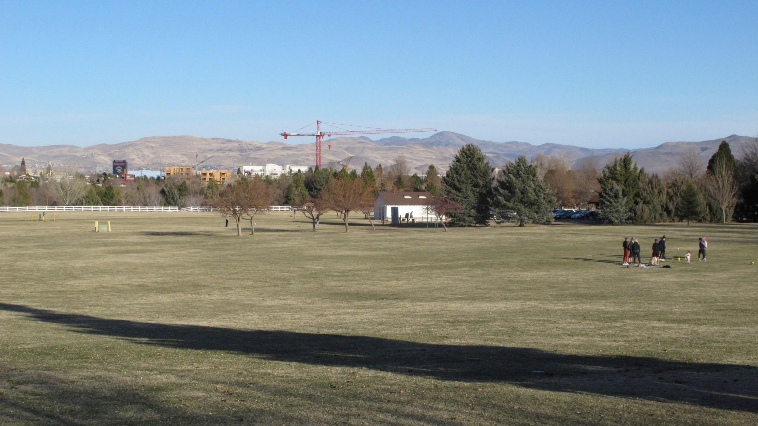 ELECTION 2020-NEVADA-PHANTOM PRECINCT