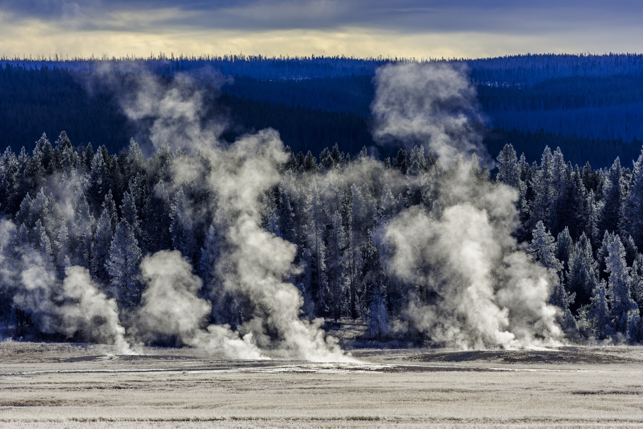3 Year Old Burned After Falling Into Thermal Feature At Yellowstone Abc27