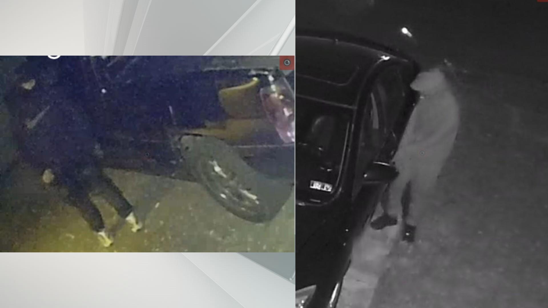Auto thieves