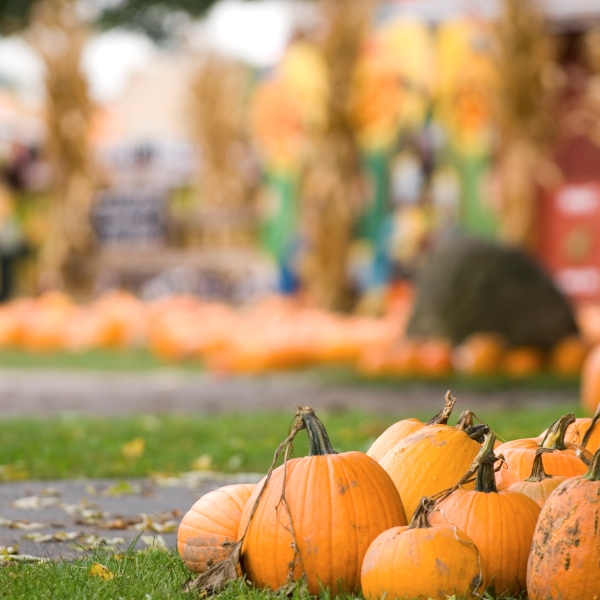 pa fall festivals